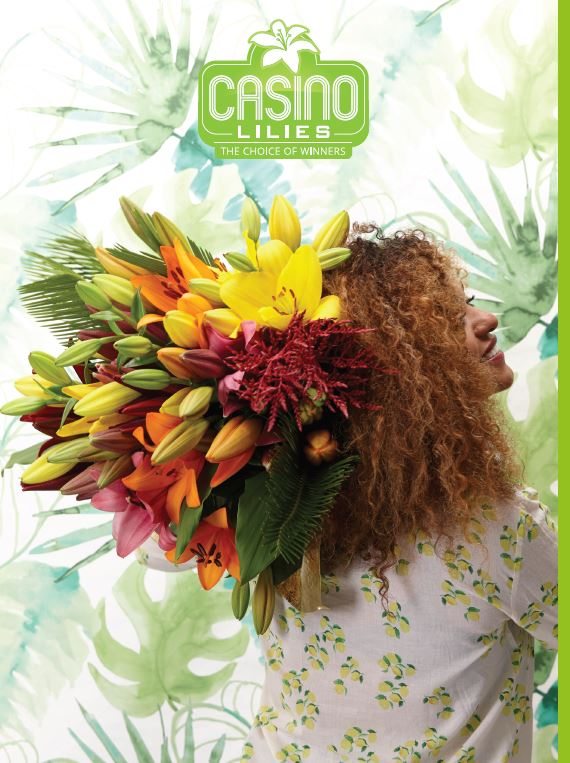 Brochure Casino Lilies